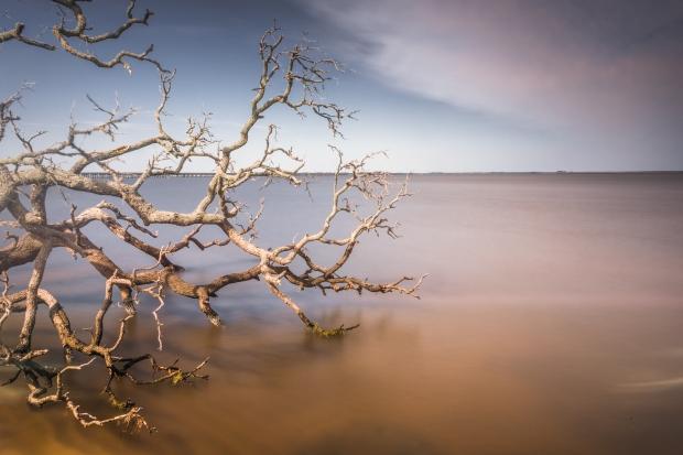 Erosion, Croatan Sound #2, 2015